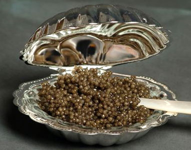 caviar_shell